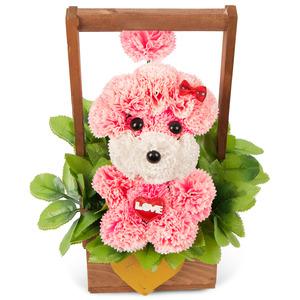 비누꽃(분홍푸들2)
